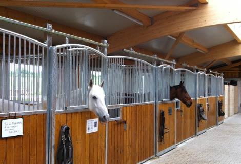 Pferdestaelle-Vorschau
